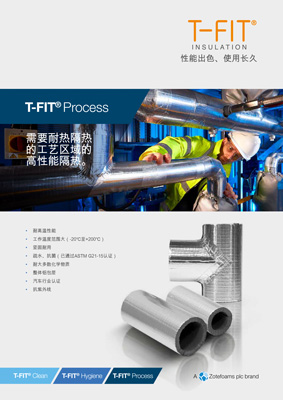 T-FIT Process
